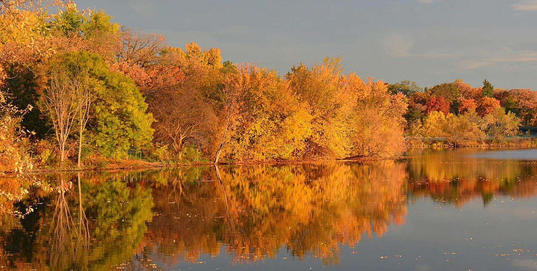 autumn trees along lake como